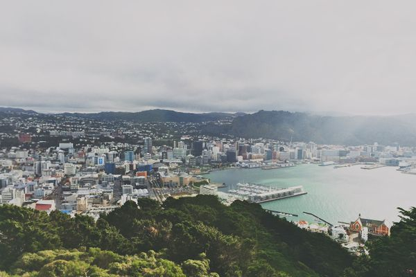 Blockchain, Privacy and Encryption: A New Zealand Perspective